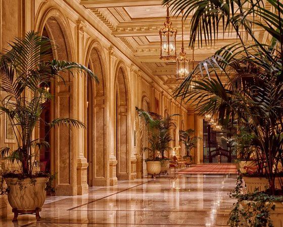 Quel est le meilleur hôtel restaurant à Brive ? Image